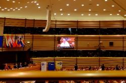 Многоезичие и равни права в Европейския съюз: ролята на жестовите езици_24