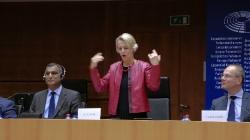 Многоезичие и равни права в Европейския съюз: ролята на жестовите езици_26